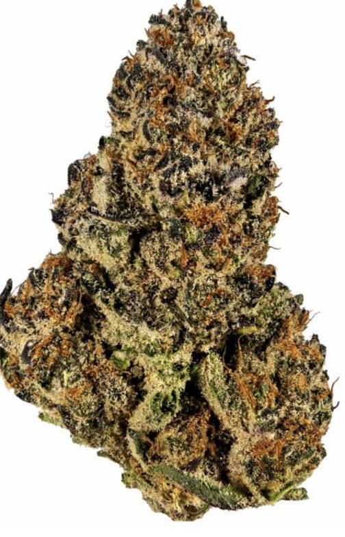 buy mimosa strain online