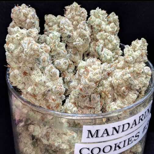 buy mandarine cookies